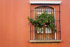antigua guatemala fönster Arkivfoto