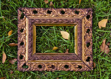 Antigue  picture frame on autumn grass with yellow leaves. Antigue ornate picture frame on autumn grass with yellow leaves Royalty Free Stock Images