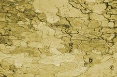 Antiguo, de madera, fondo, descolorado, peladura, pintura , Viejo, pintado, superficie, textura imagen de archivo