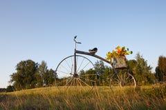 Antik cykel med blomkrukan Fotografering för Bildbyråer
