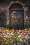 Antik dörr i skogen arkivbilder