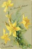Antik jul som hälsar vykortet pingstlilja 1907 Royaltyfria Foton