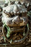 Antik kines Lion Casting med mässing arkivbild