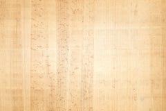 antik papyrus Royaltyfria Bilder