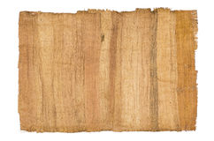 Antik papyrus arkivfoto