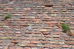 antik tegelstenvägg Royaltyfri Foto