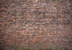 Antik textur för tegelstenstenvägg stil för spanjor för bakgrundscartagena colombia colonal de indias foto fotografering för bildbyråer