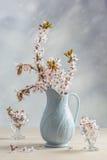 Antik tillbringare med blomningen Royaltyfri Bild