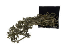 Antika invecklade tangenter som spiller från portföljen Royaltyfria Bilder
