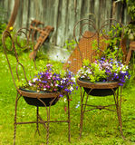 Antika trädgårds- stolar Royaltyfria Bilder