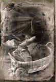 Antike食物foto 免版税库存照片