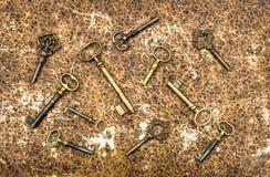 Antike goldene Schlüssel über tierischem ledernem Hintergrund der Weinlese Stockfotos