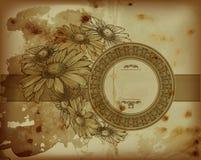 Antike Kamille Blumenschablonen Lizenzfreies Stockfoto