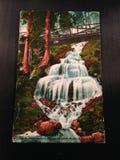 Antike Postkarte Shasta-Frühlinge Kalifornien lizenzfreie stockfotos