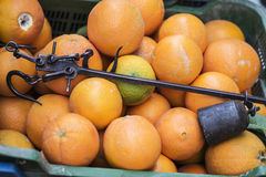 Antike römische Laufgewichtswaage oder römische Balance in einem Kasten mit Orangen im Markt Stockfotografie