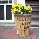 Antiker Korb gefüllt mit Fallblumen lizenzfreies stockfoto