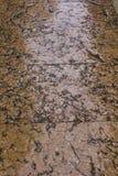 Antiker Marmorbodenbelag Stockbilder