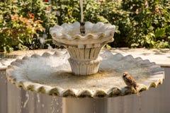 Antiker Trinkwasserbrunnen der türkischen Osmaneart stockbilder