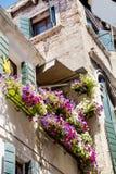 Antikes Gebäude mit Terrasse mit blühender Petunie des Rosas blüht in Venezia Lizenzfreie Stockfotografie