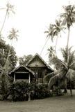 Antikes malaysisches hölzernes Haus Lizenzfreies Stockfoto