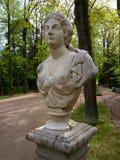 Antikvitetbyst i sommarträdgården av St Petersburg royaltyfri bild