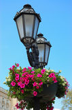 antikviteten blommar lampan royaltyfri bild