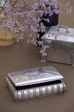 antikviteten boxes silver royaltyfri foto