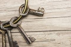 antikviteten keys skelett royaltyfri bild