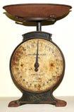 Antikviteten rostade skalan på hyllan i skafferit royaltyfri foto