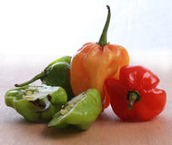 Antille Chillies, Chillie Peppers,four peppers, one halved showing pips. Group of four chillie peppers one cut in half to show seeds. red green and yellow Stock Image