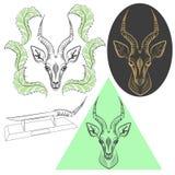 antilope Royalty-vrije Stock Fotografie