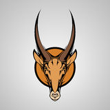 Antilope Graphic Mascot Head with Horns Royalty Free Stock Photography