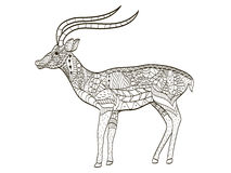 Antilope het kleuren vector voor volwassenen Royalty-vrije Stock Afbeeldingen