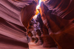 Antilopkanjon, AZ USA Fotografering för Bildbyråer