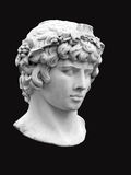 Antinous头装扮酒神的在黑背景 库存图片