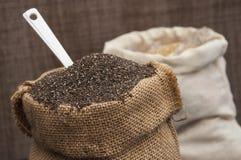 Antiossidante del cereale di Chia fotografie stock