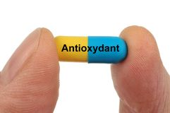 Antioxidant capsule in hand. Antioxidant capsule written in french close-up on white background held between two finger royalty free stock photos