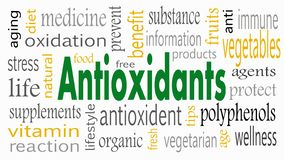 Antioxidant word cloud concept - Illustration.  royalty free illustration