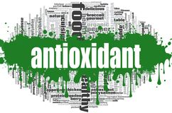 Antioxidant word cloud. Concept on white background, 3d rendering stock illustration