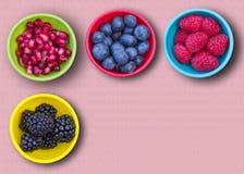 Antioxidantes en cuencos fotografía de archivo libre de regalías