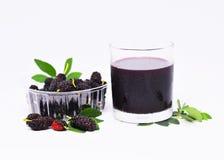 Antioxydant de fruit de mûre Image libre de droits