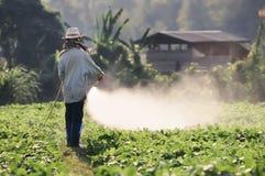 Antiparassitario di spruzzatura dell'agricoltore sul giacimento della soia Fotografia Stock