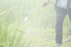 Antiparassitario di spruzzatura dell'erbaccia Blurred nell'agricoltura e alimento biologico crescente sulla montagna Fotografia Stock Libera da Diritti