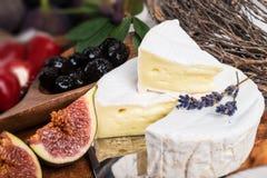Antipasti μαλακών τυριών Στοκ εικόνα με δικαίωμα ελεύθερης χρήσης