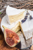 Antipasti μαλακών τυριών Στοκ Φωτογραφία
