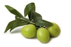 Antipasti - olives d'isolement images libres de droits