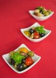Antipasti salad with tomatoes and olives. Mediterranean antipasti salad with mozzarella balls, green and black olives and cherry tomatoes and some tiny-leafed Royalty Free Stock Image