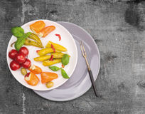 Antipasti vegetables served in  two plates Royalty Free Stock Photography