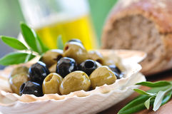 Antipasti - verdi ed olive nere e olio d'oliva immagini stock libere da diritti