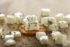 Antipasto con formaggio ed aneto Fotografie Stock Libere da Diritti